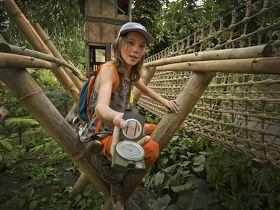 Afbeelding 4 van Wildlands Adventure Zoo Emmen