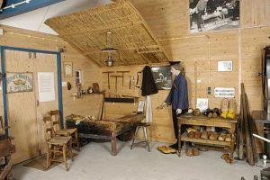 Thumbnail 2 van Busreis klompenmuseum in Eelde en orchideeënbedrijf in Haren
