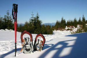 Sneeuwschoen arrangement incl. busreis en gids